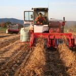 小豆コンバイン収穫